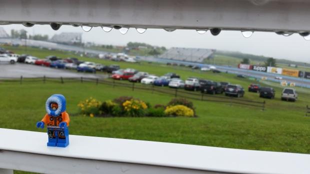 VDG hiding from rain